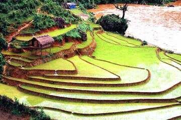 images/upload/YenBai/RuongBacThang/anh01.jpg